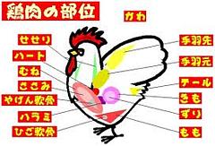 鶏肉.png